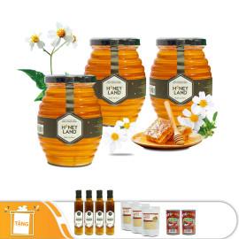 3 Hũ Mật Ong Hoa Xuyến Chi Honey Land 500g /Hũ - Tặng 4 chai mật ong hoa cỏ Điện Biên 380g + 3 gói chà bông 25g + 2 lon cá hộp